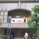 トイプードル横浜